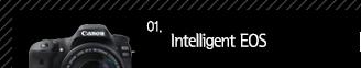 1.Intelligent EOS